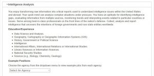 Intellience-Job-Requirements